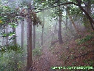 12-088徳島県吉野川市