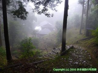 12-096徳島県吉野川市
