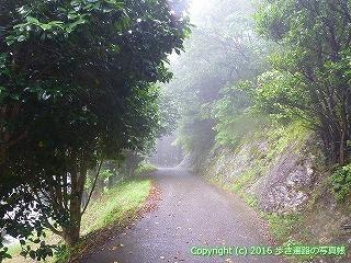 12-106徳島県吉野川市