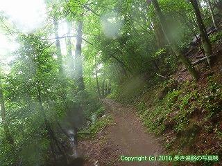 12-137徳島県名西郡神山町