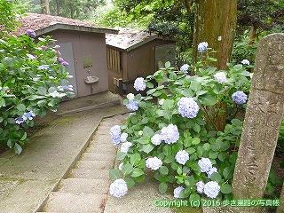 21-001徳島県勝浦郡勝浦町
