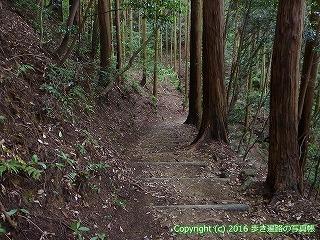 21-005徳島県勝浦郡勝浦町
