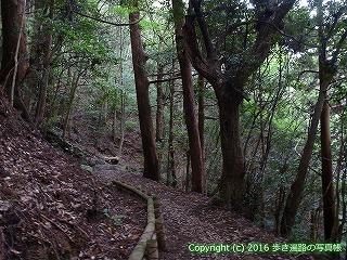 21-006徳島県勝浦郡勝浦町