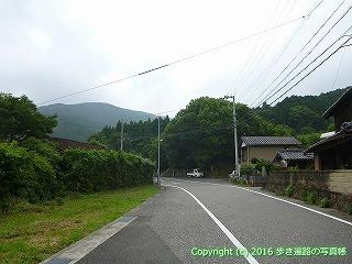 21-036徳島県阿南市