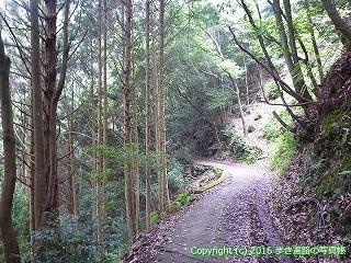 21-055徳島県阿南市