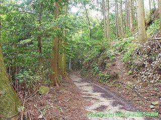 21-057徳島県阿南市