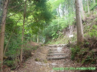 21-089徳島県阿南市