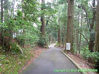 21-108徳島県阿南市