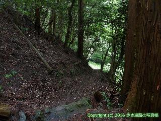 22-092徳島県阿南市