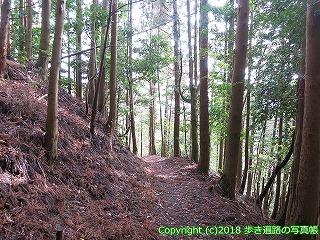 2201-033徳島県阿南市