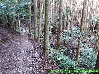 2201-035徳島県阿南市