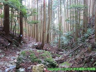2201-037徳島県阿南市