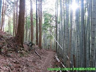 2201-092徳島県阿南市