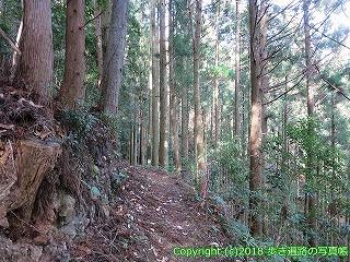 2201-096徳島県阿南市