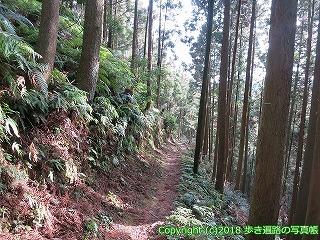 2201-097徳島県阿南市