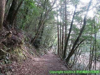2201-101徳島県阿南市