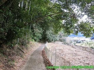 2201-106徳島県阿南市