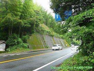 23-051徳島県阿南市国道55号線合流