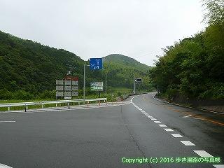 23-071徳島県阿南市海岸沿いコース分岐点