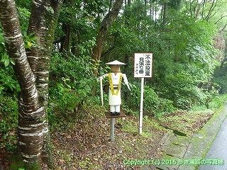 23-088徳島県海部郡美波町
