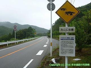 23-098徳島県海部郡美波町アカテガニに注意
