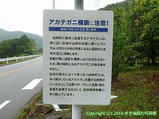 23-099徳島県海部郡美波町