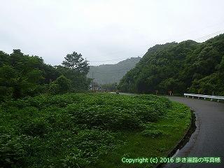 23-123徳島県海部郡美波町