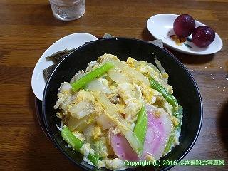 24-455高知県室戸市