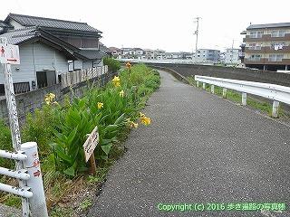 31-006高知県高知市
