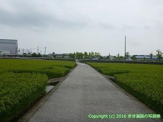 31-019高知県高知市
