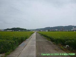 31-030高知県高知市