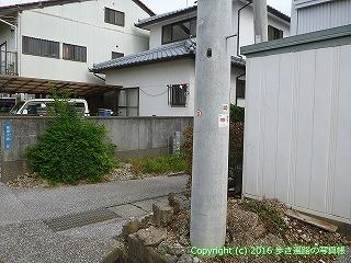 31-049高知県高知市