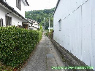 31-050高知県高知市