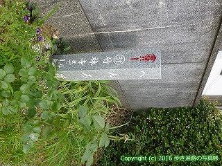 31-051高知県高知市