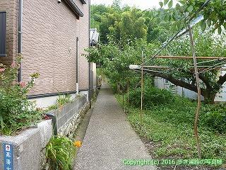 31-055高知県高知市