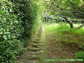 31-058高知県高知市
