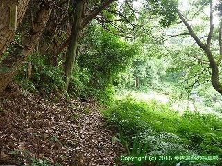 31-060高知県高知市