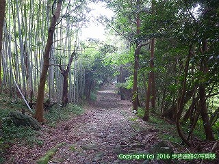 32-002高知県高知市