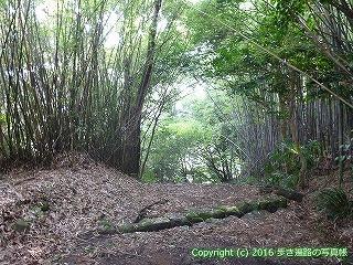 32-005高知県高知市