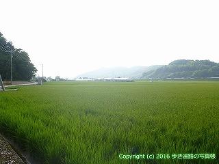 32-026高知県高知市