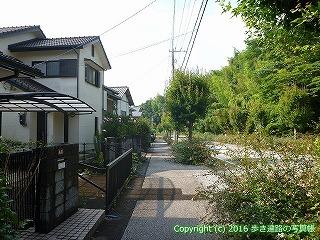 32-045高知県南国市