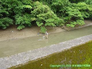 34-011高知県高知市