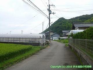 34-031高知県高知市