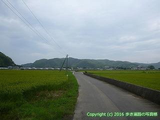 34-036高知県高知市