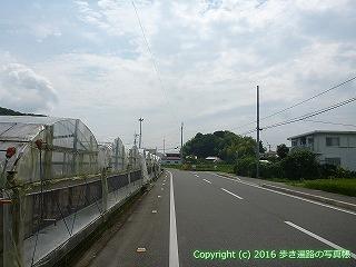 35-010高知県高知市