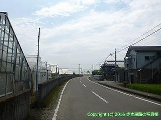 35-014高知県高知市