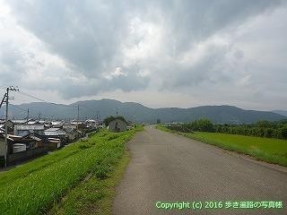 35-049高知県土佐市