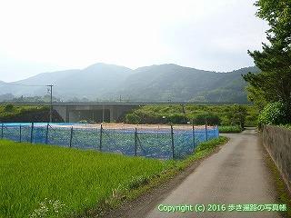 35-075高知県土佐市