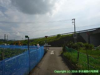 35-076高知県土佐市