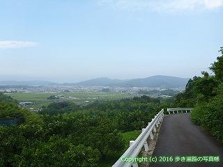 36-005高知県土佐市